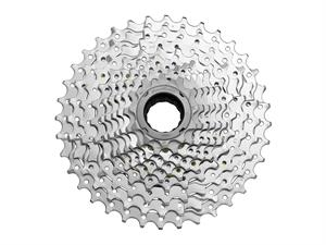 10-Speed 13-36T Freewheel